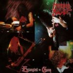 Morbid Angel - Entangled In Chaos Cover