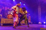 Fotos von Mr. Hurley & Die Pulveraffen auf dem Zeltfestival Rhein-Neckar 2018