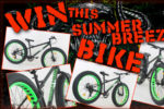Summer Breeze Fatbike
