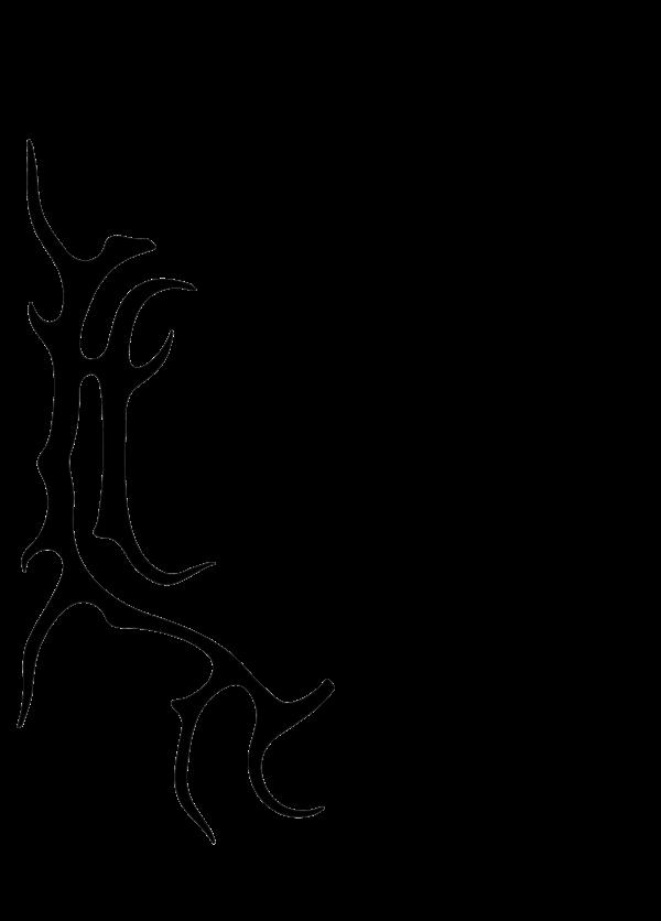 Bild Heilung Logo