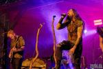 Konzertfoto von Waldgeflüster - Fimbul Festival 2020