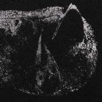 Demon Head - Viscera Cover